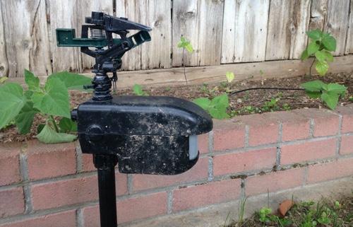 contech scarecrow sprinkler