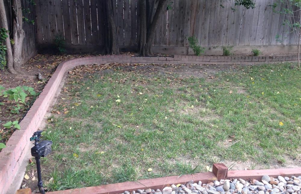 mss backyard sprinkler coverage